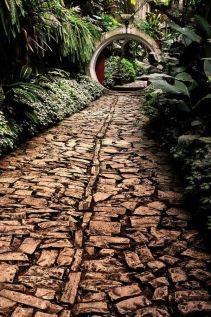 Las Pozas, Xilitla, Mexico Rod Waddington